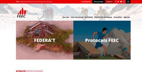 diseño de paginas web para la feec
